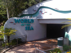 sea-world-outside-before